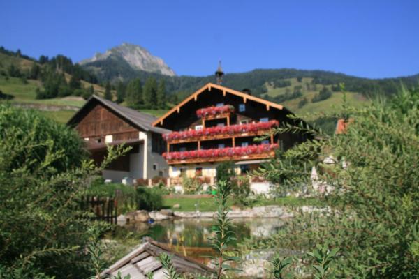 Hotellikuvia: Amosergut, Dorfgastein