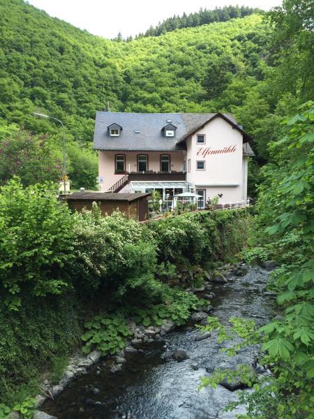 Hotelbilleder: Hotel Elfenmühle, Bad Bertrich