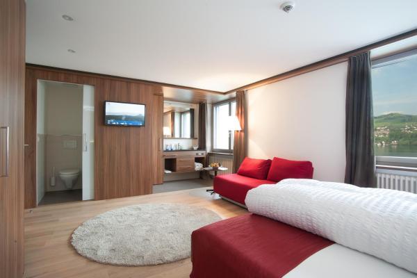 Hotel Pictures: Seehotel Delphin, Meisterschwanden