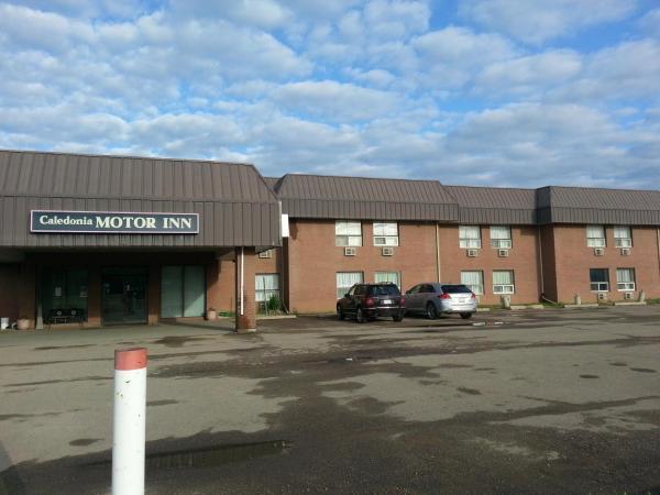 Hotel Pictures: Caledonia Motor Inn, Viking