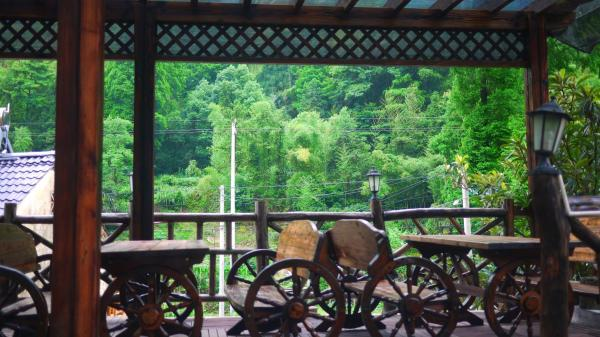 Hotel Pictures: Moganshan Bamboo View Guesthouse, Deqing