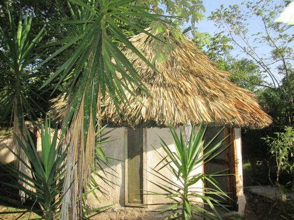 Hotel Pictures: Chaya Maya Jungle Lodge, Teakettle Village