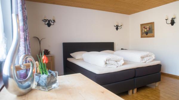 Hotel Pictures: Hotel Badhof, Altstätten