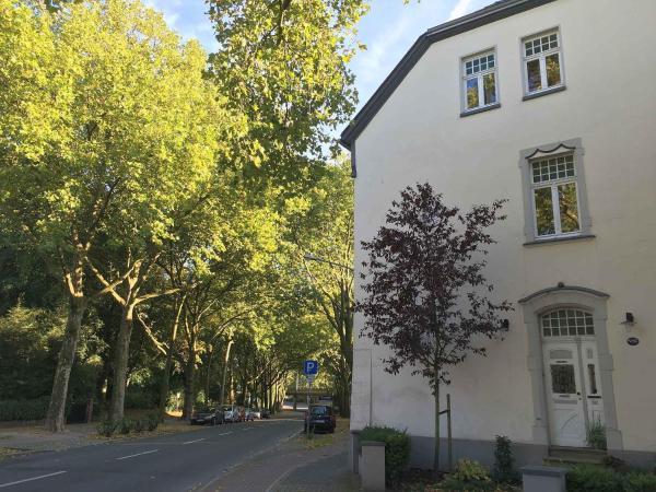 Hotel Pictures: Sadhoff Ferienwohnungen, Oberhausen