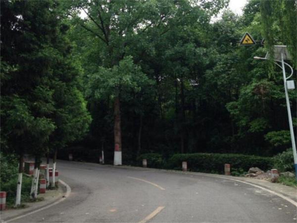 Hotel Pictures: Mianyang Luofushan Hongyun Hostel, Anzhou