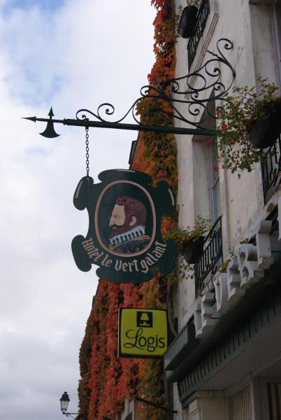 Hotel Pictures: Le Vert Galant, La Flèche