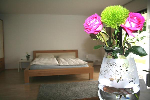 Hotel Pictures: Pension am Waldrand, Karlsbad