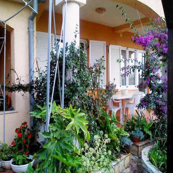 Zdjęcia hotelu: Apartments Milka Ližnjan, Ližnjan