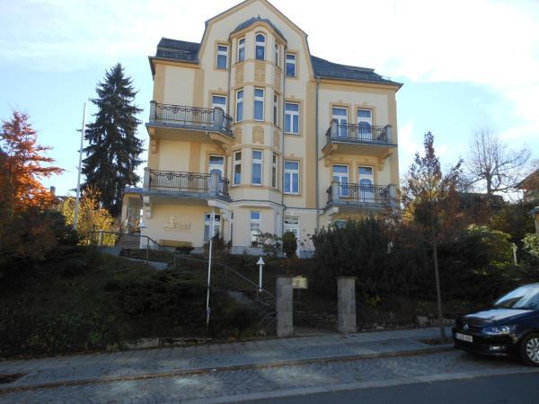 Hotelbilleder: Pension Fürstenhof, Bad Elster