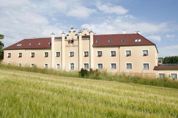 Hotel Pictures: Hotel Allvet, Drnovice