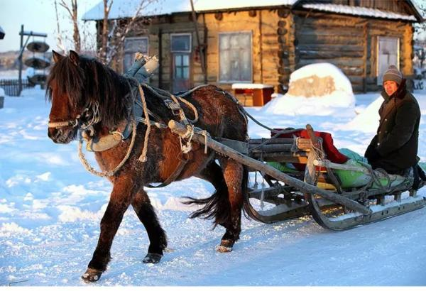 Hotel Pictures: Yabuli Ski Resort Jinqingdingzi farm house, Shangzhi