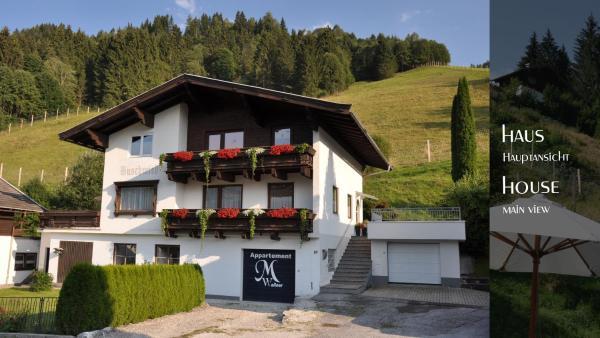 Foto Hotel: Ferienhaus Auschmiede, Hollersbach im Pinzgau