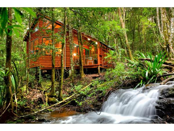 酒店图片: The Mouses House Rainforest Retreat, Springbrook