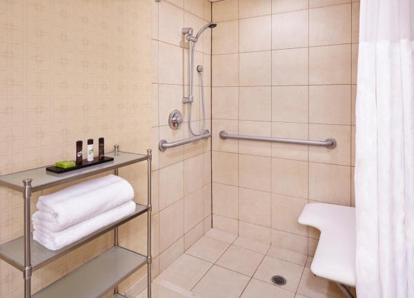 King Suite - Disability Access Roll in Shower/Non-Smoking