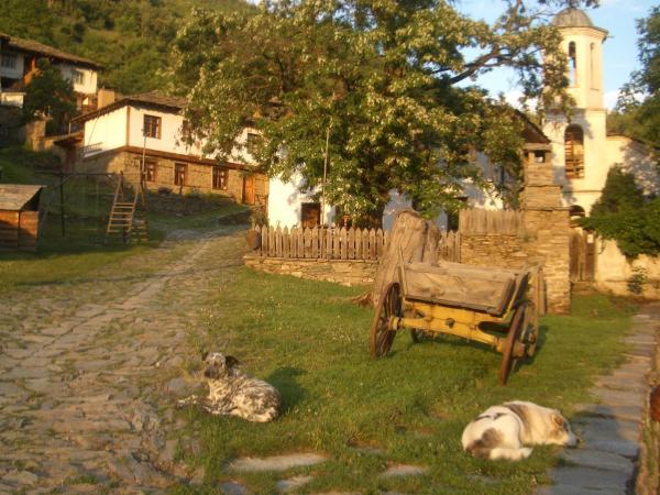 Hotelfoto's: Leshten Eco Villas, Leshten
