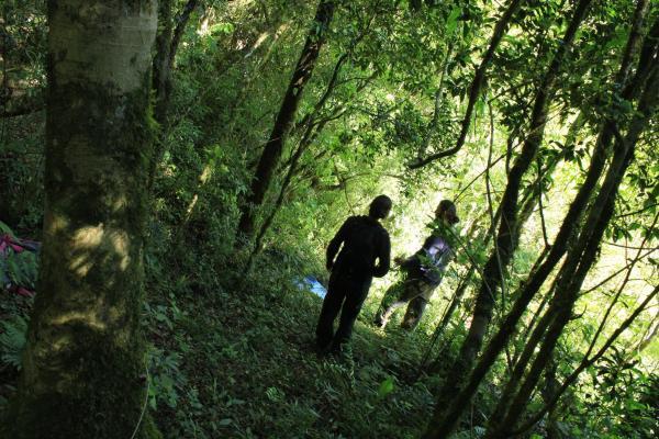Hotellikuvia: La Perla de la Selva Lodge, Saltos del Moconá