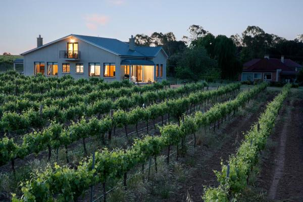 酒店图片: Barossa Shiraz Estate, 林道