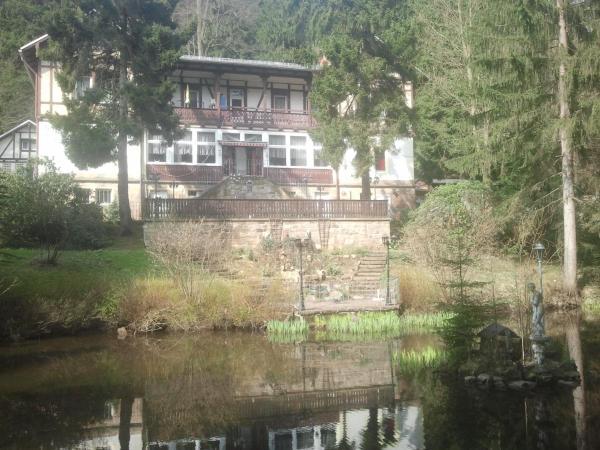 Hotel Pictures: Pension & Restaurant Zur Schweizermühle, Rosenthal
