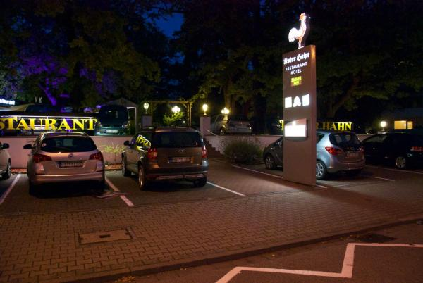 Hotel Pictures: Hotel-Restaurant Roter Hahn, Rüsselsheim