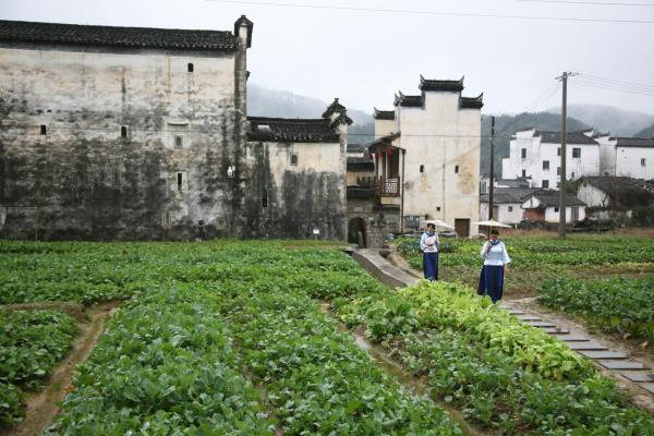 Hotel Pictures: Fusuitang Homestay, Wuyuan