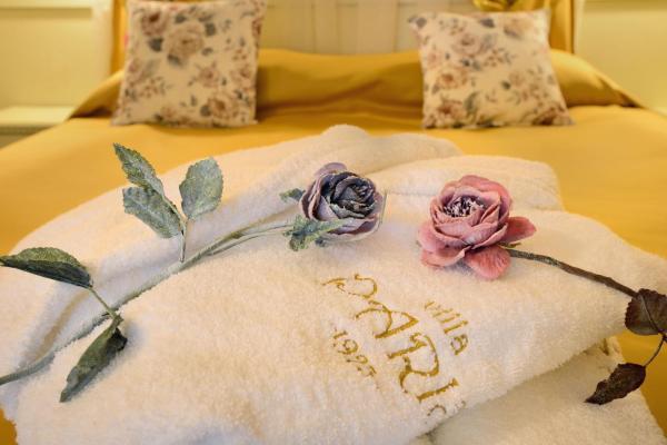 Hotelbilleder: Villa Paris, Hisarya