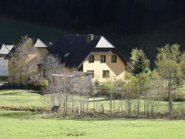 Fotografie hotelů: Apartment Stallbauer 2, Hinterwinkel