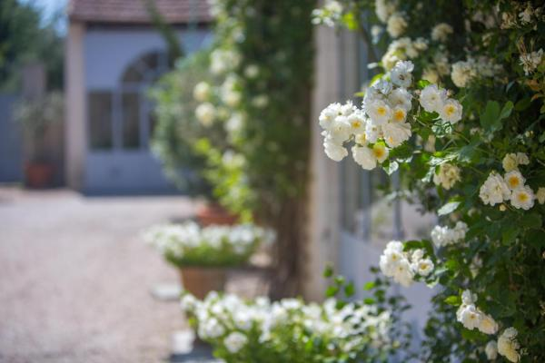 Hotel Pictures: Blanche Fleur, Châteauneuf-de-Gadagne