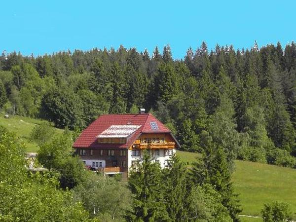 Hotel Pictures: Haus am Berg, Schönwald