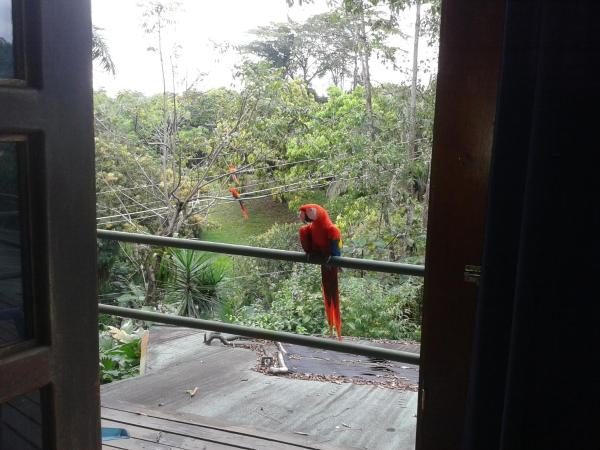 Hotel Pictures: Didi's Charming House B&B, Manuel Antonio