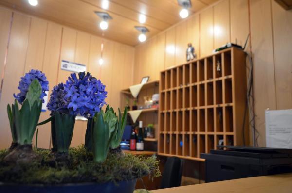 Hotel Pictures: Am Alten Hafen, Neuharlingersiel