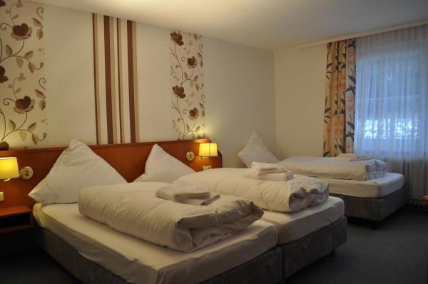 Hotel Pictures: Hotel Engel Altenau, Altenau