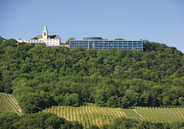Fotos do Hotel: Suitehotel Kahlenberg, Viena