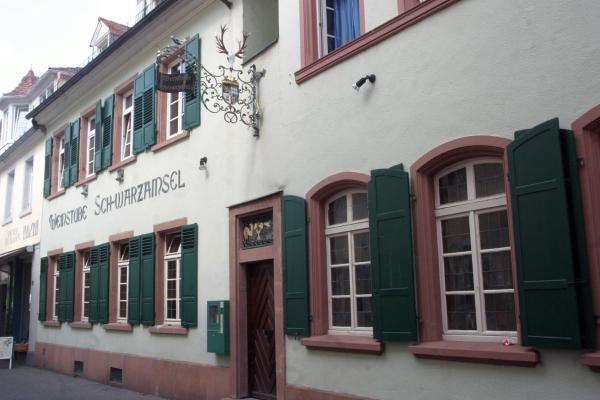 Hotelbilleder: Weinstube Schwarzamsel, Speyer