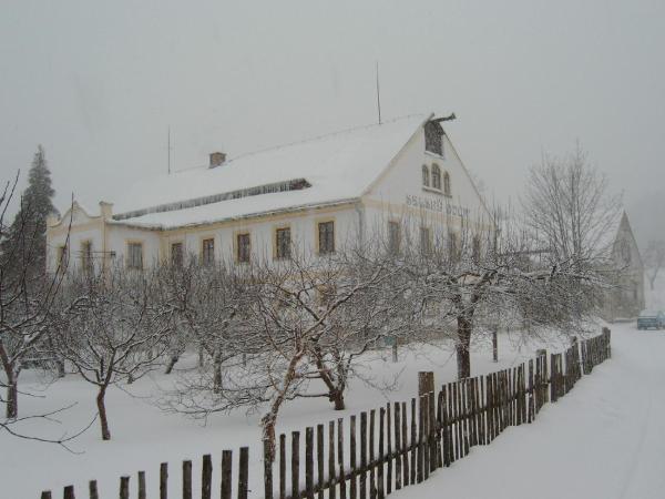 Hotel Pictures: , Raspenava