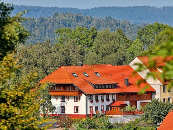Hotel Pictures: , Dachsberg im Schwarzwald