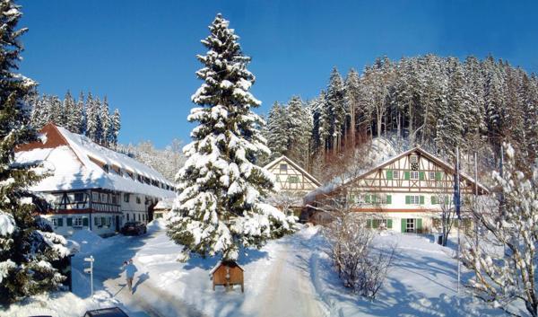 Hotel Pictures: Allgäu Hotel Hofgut Kürnach, Wiggensbach