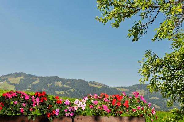Hotelbilleder: Hotel Alpenblick, Fischen
