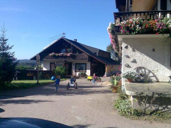 Hotel Pictures: Willmannshof, Furtwangen