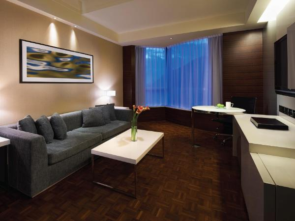 King Suite with City View