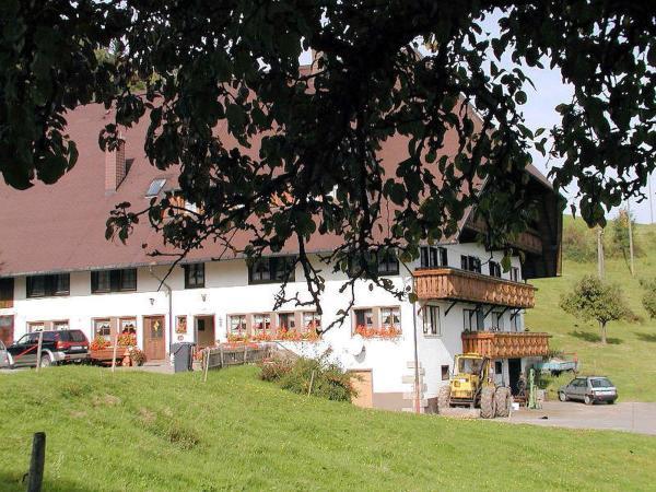 Hotel Pictures: Schanzenberghof, Hornberg