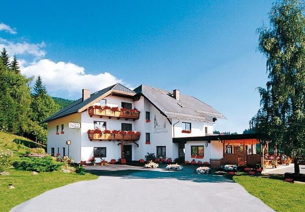 Hotelbilleder: Forellenwirt Bacher, Kirchberg