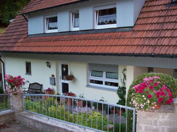 Hotelbilleder: Ferienhaus Vollmer, Wolfach