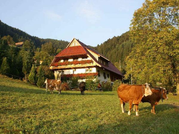 Hotel Pictures: Unterer Gurethshof, Zell am Harmersbach