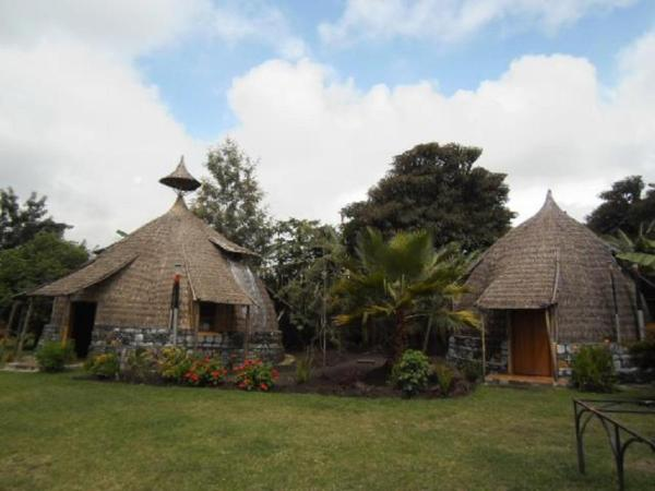 Hotel Pictures: Zion Train Lodge, K'orē
