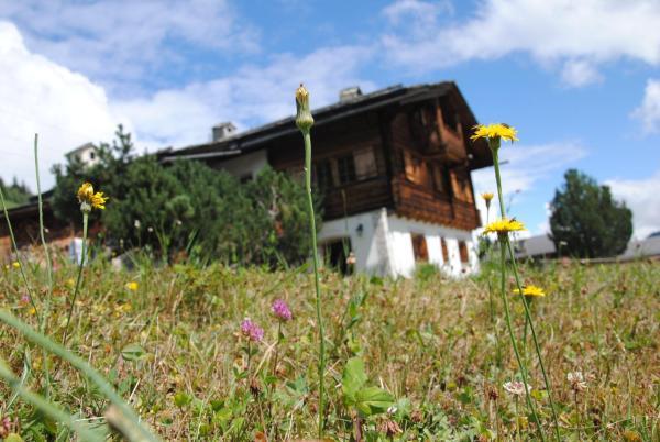 Hotel Pictures: Chalet Muraun, Disentis