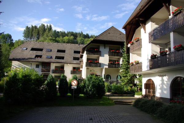 Hotel Pictures: Berghotel Schwarzwaldblick, Triberg