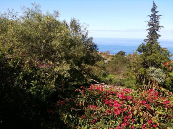 Hotel Pictures: Farm Stay Villa Flor del mundo, La Orotava