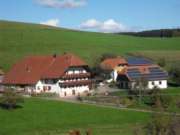 Hotelbilleder: Stockerhof, Elzach