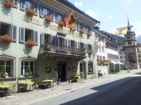Hotel Pictures: Hotel zum Schwarzen Löwen, Altdorf