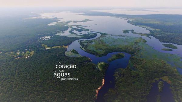 Hotel Pictures: Pousada Pantanero Pantanal, Mimoso